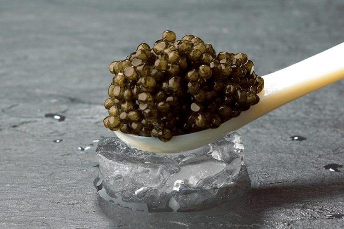 Osietra Kaviar-0
